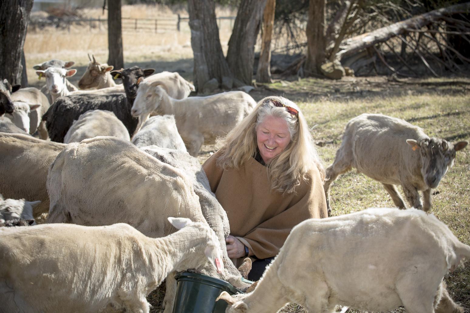 me and sheep.jpg