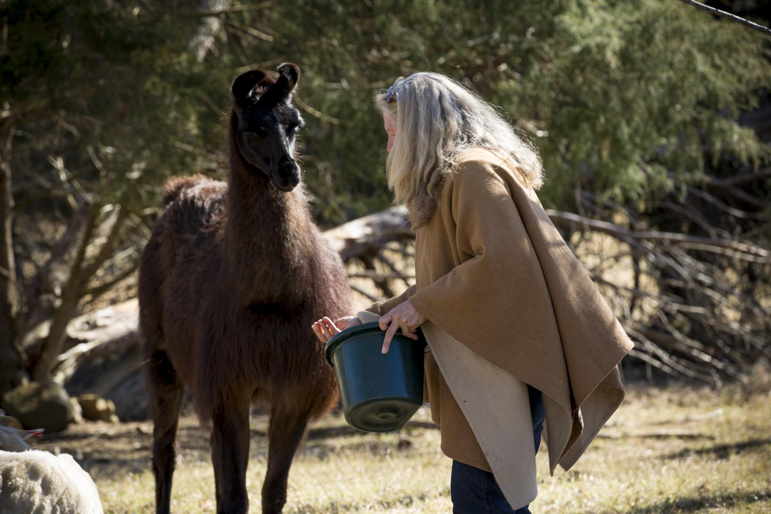 me and llama.jpg