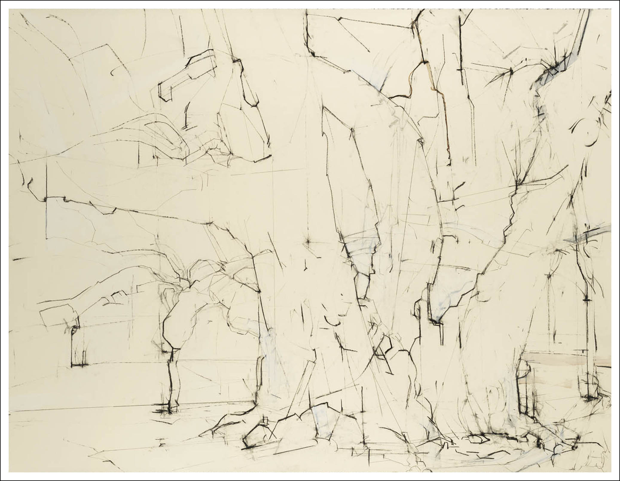 Brooklyn Oak ,   2007, Charcoal on paper (38.25 inches x 50 inches)