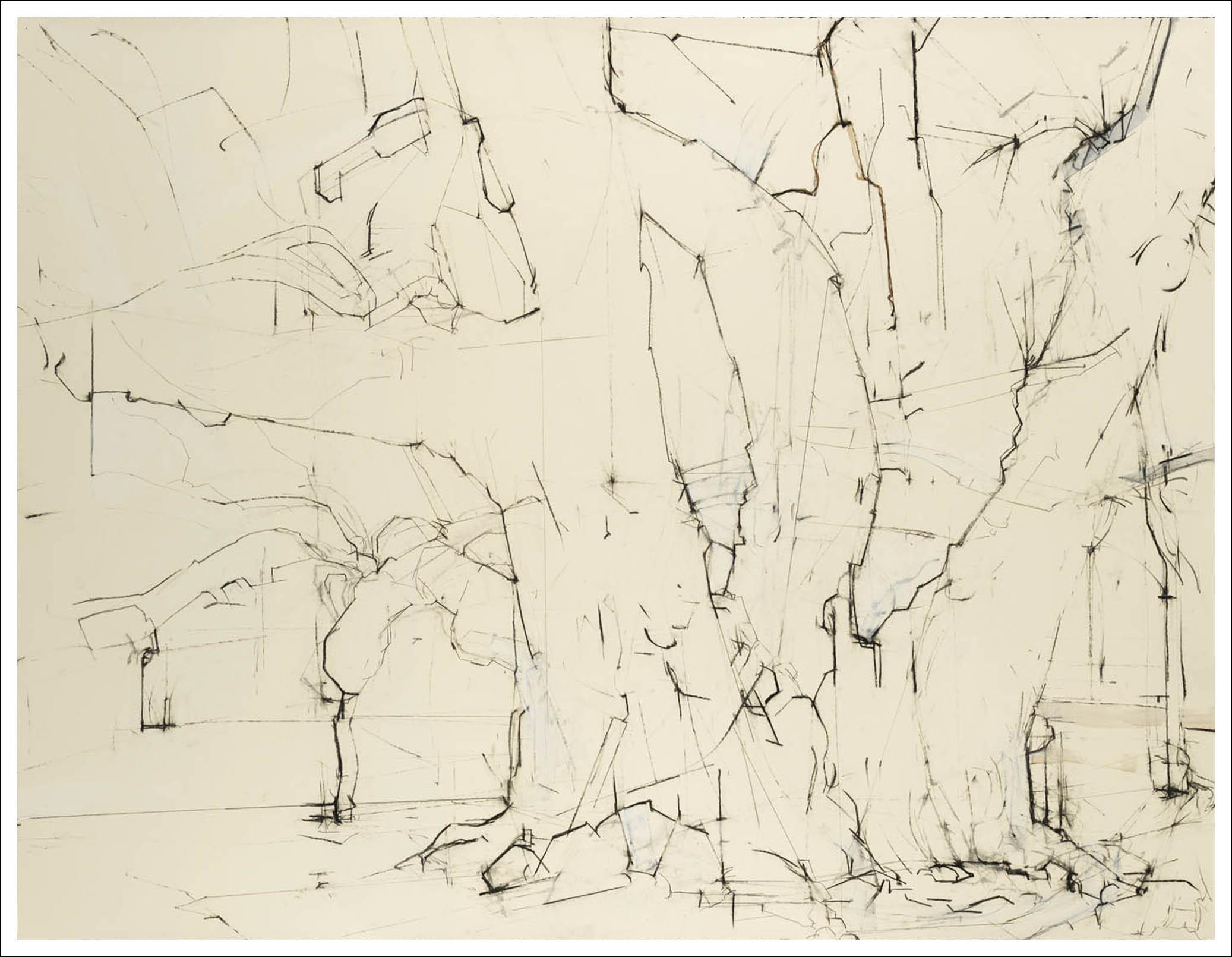 Brooklyn Oak ,  2007, Charcoalon paper (38.25 inches x50 inches)