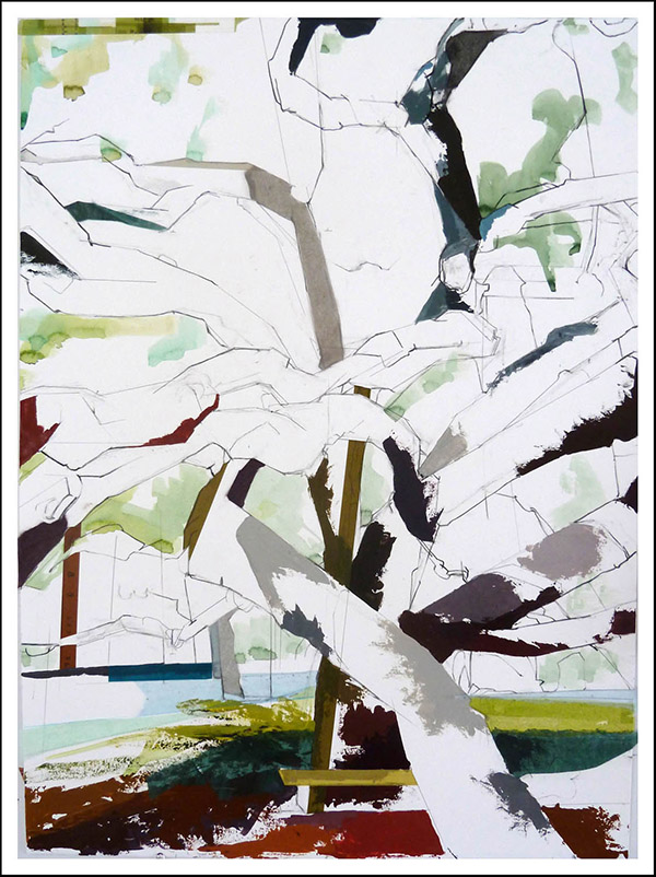 """30° 36'57.1""""N 96° 20'29.1""""W     Century Tree II, 2015   30 inches x 22 inches"""