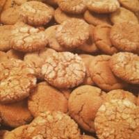 Ginger Cookies 1.JPG