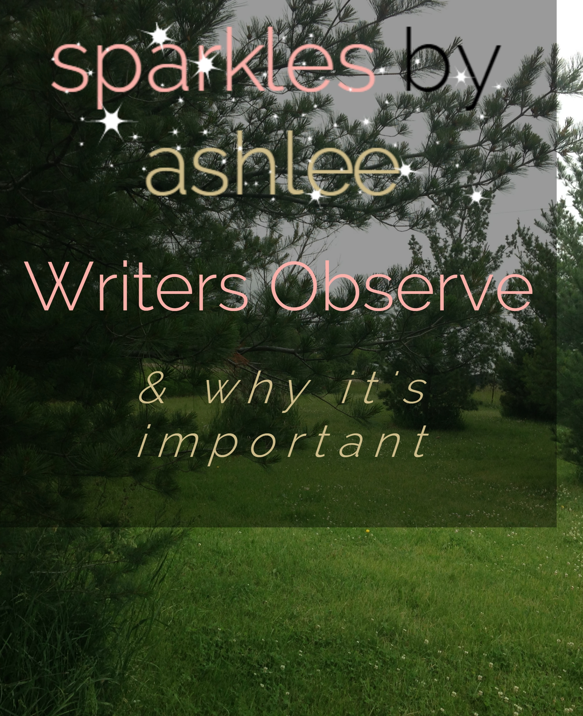 Writers-Observe-Sparkles-by-Ashlee.jpg