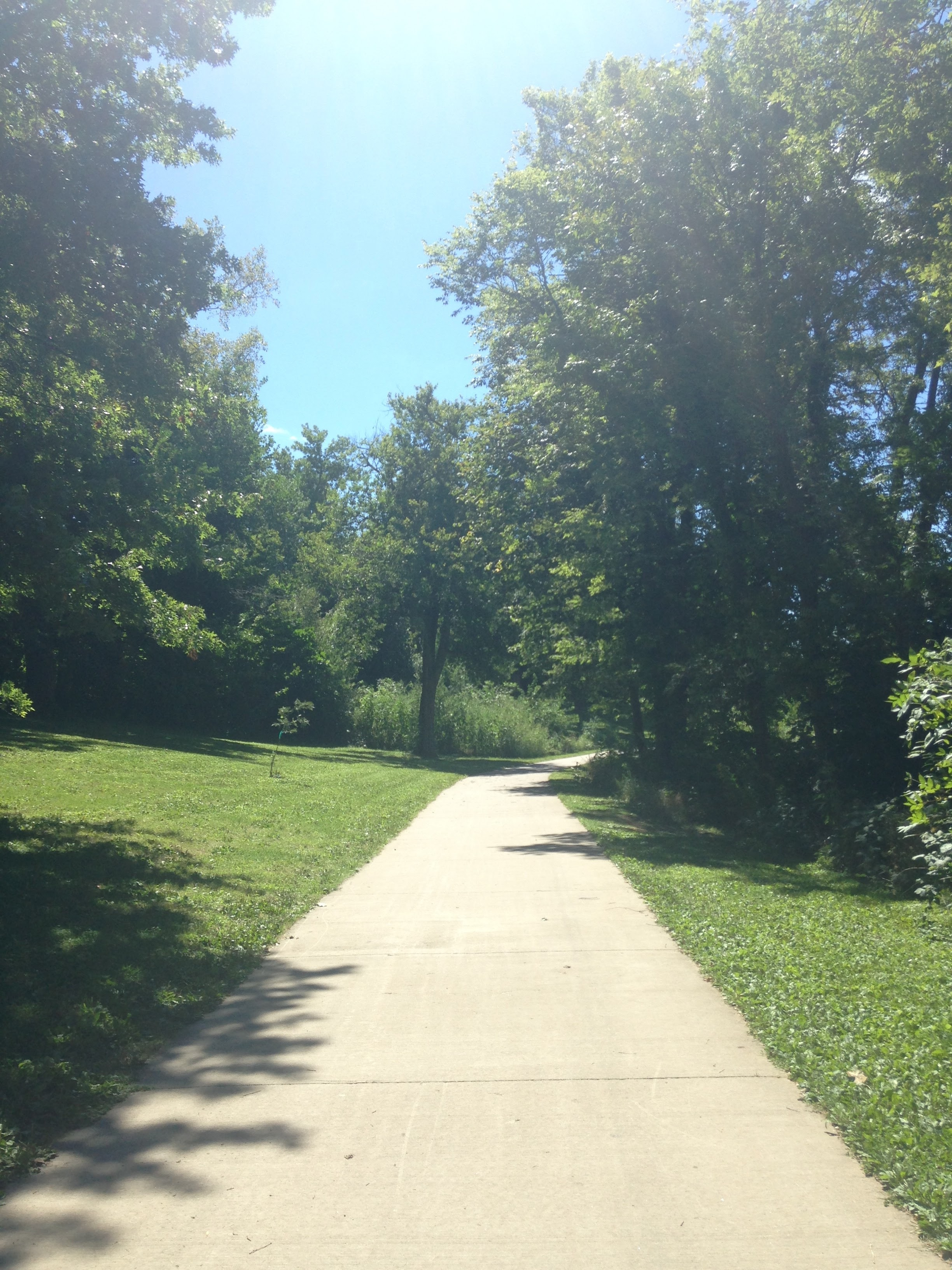 Sidewalk-and-Sunshine.jpg