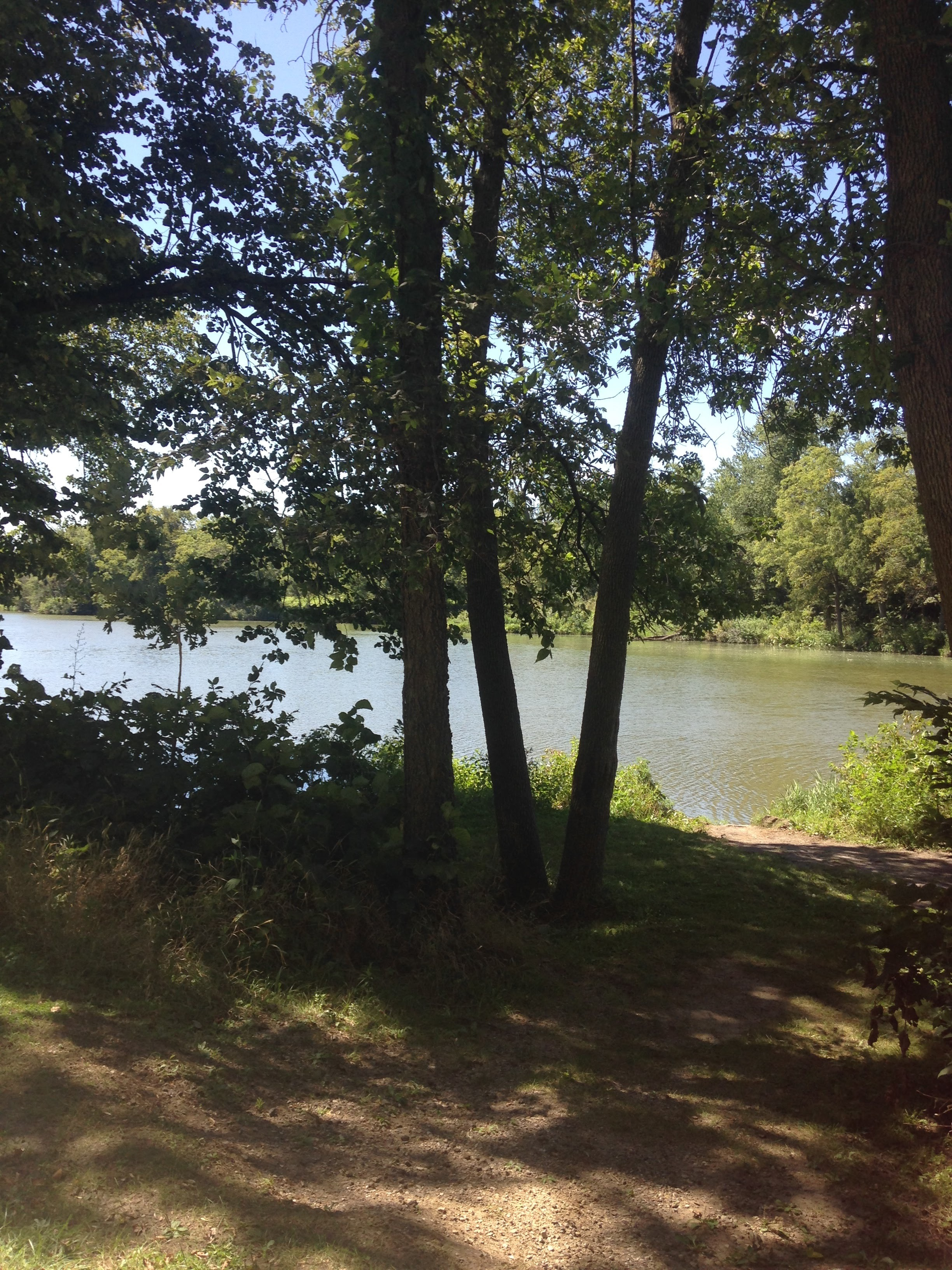 Lake-from-the-Trail.jpg
