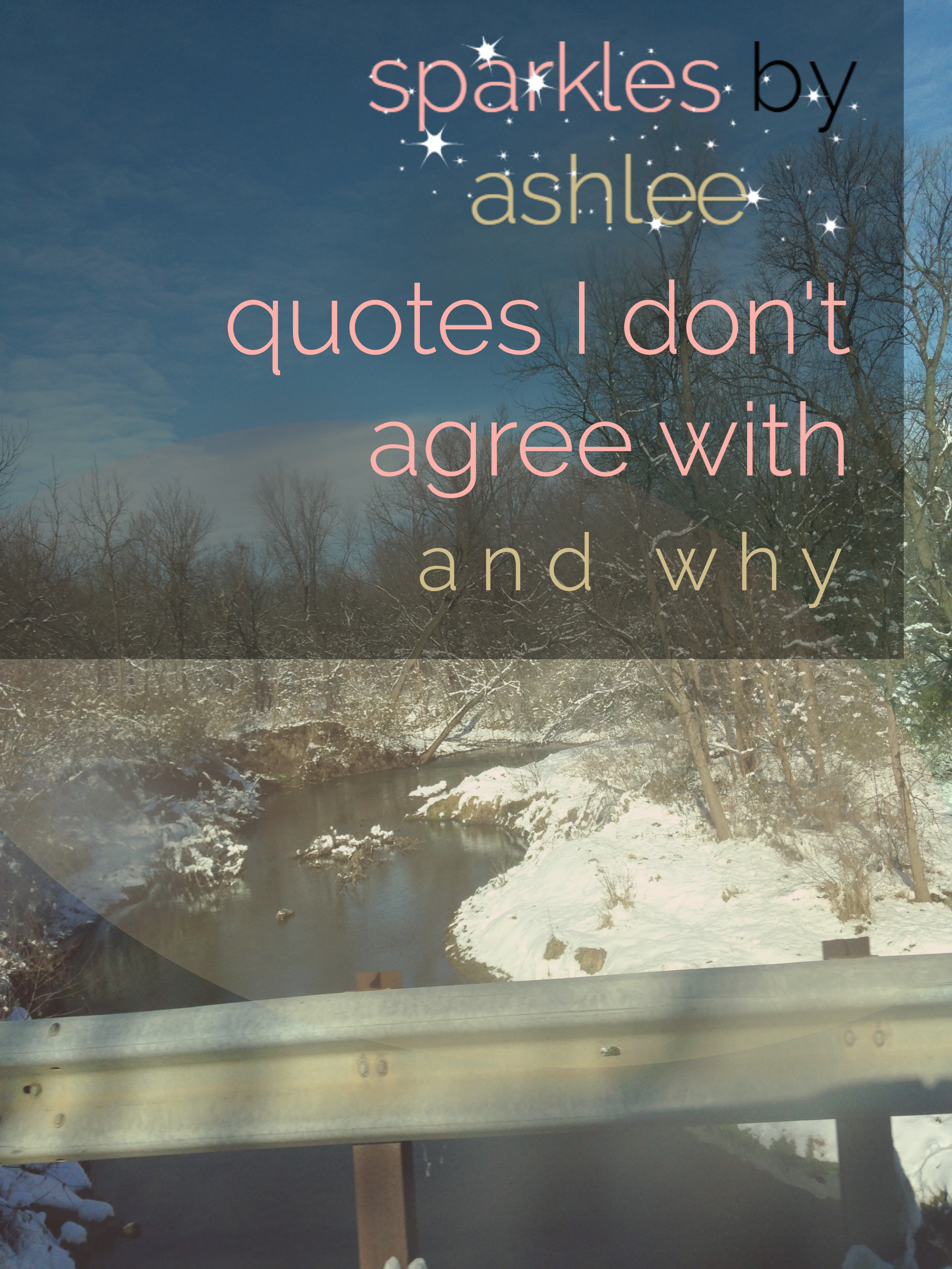 Quotes-I-Dont-Agree-With-Sparkles-by-Ashlee.jpg