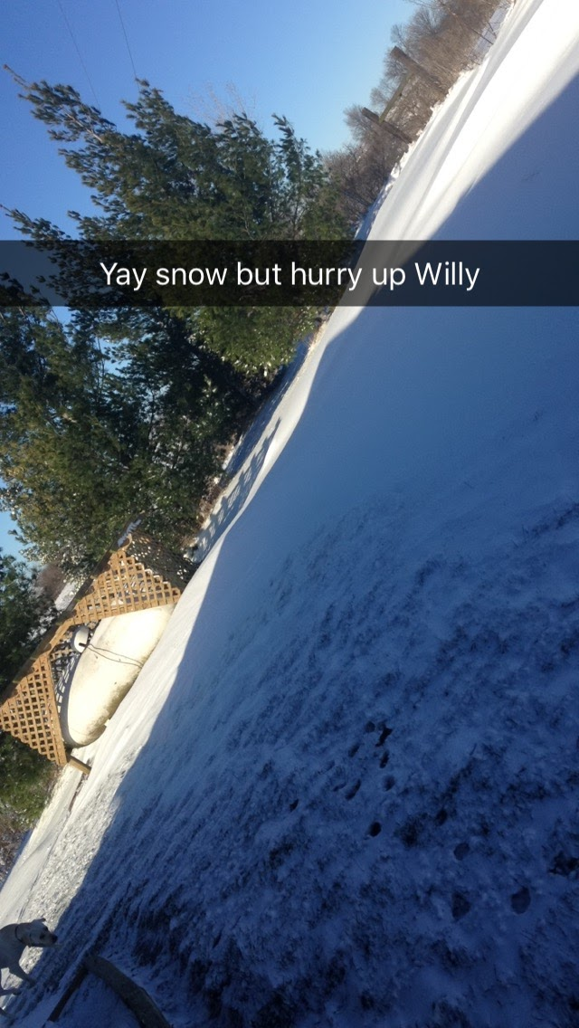 Taking-Willy-Out-With-Snow.jpg