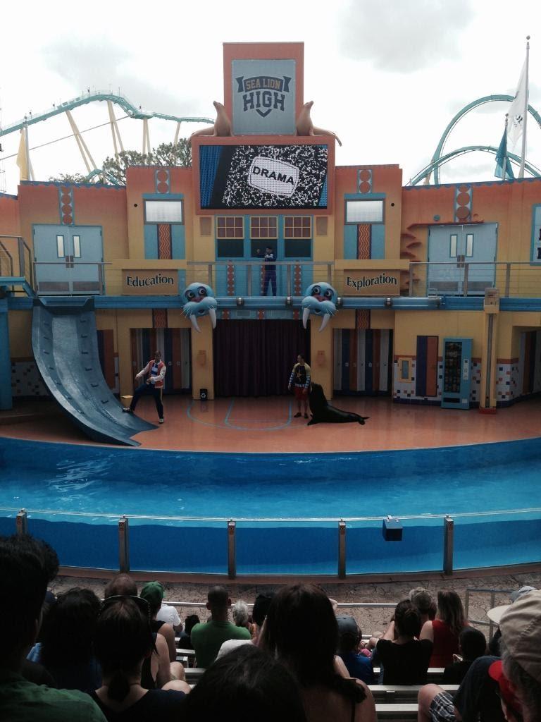 SeaWorld-Sea-Lion-High.jpg