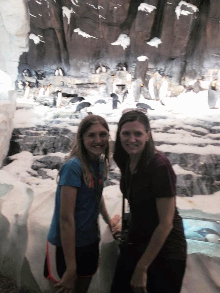 Ashlee-Mommy-Penguins-SeaWorld.jpg