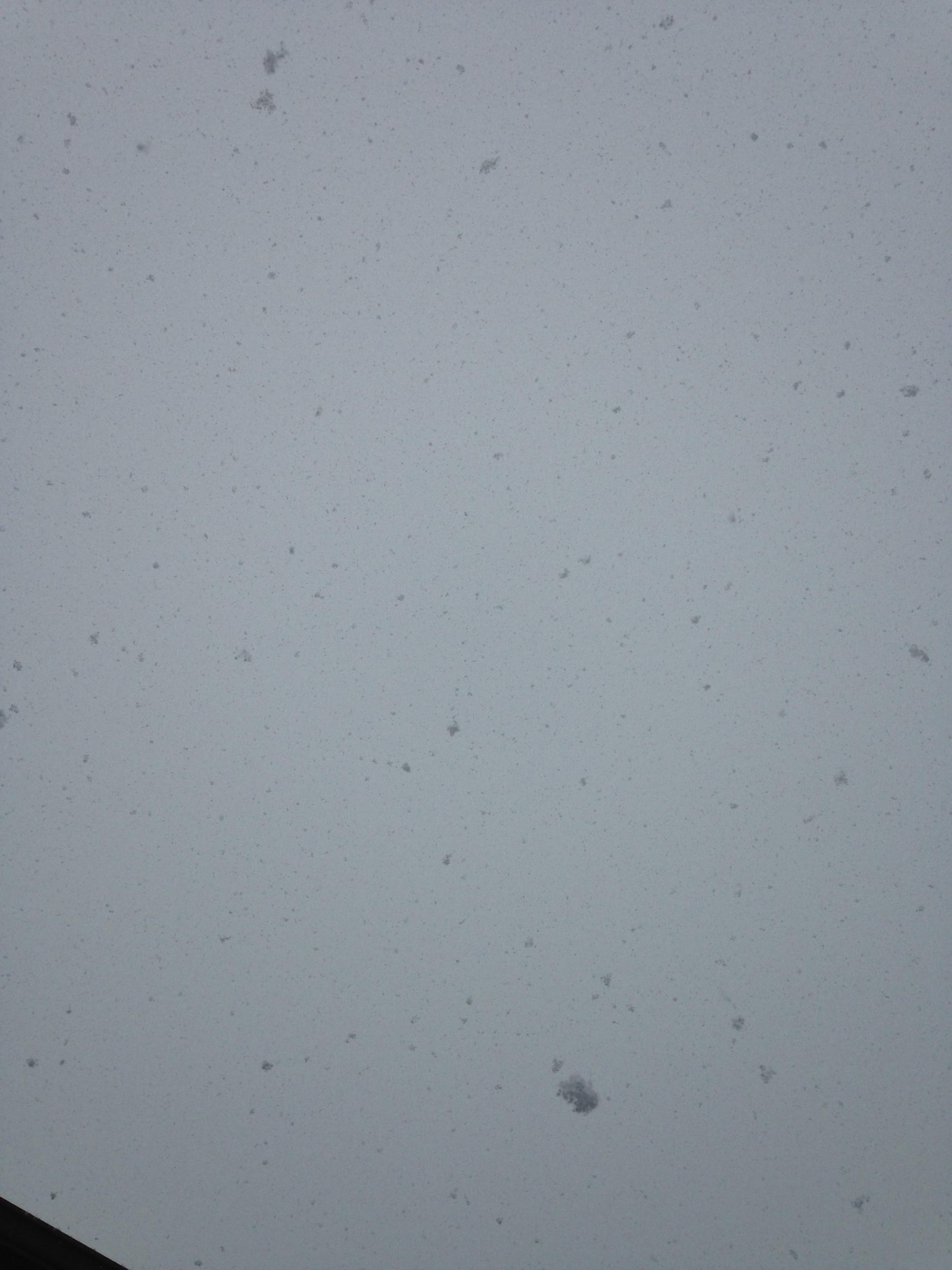Falling-Snow.jpg