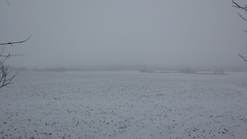 Winter-Day-White-Field.jpg