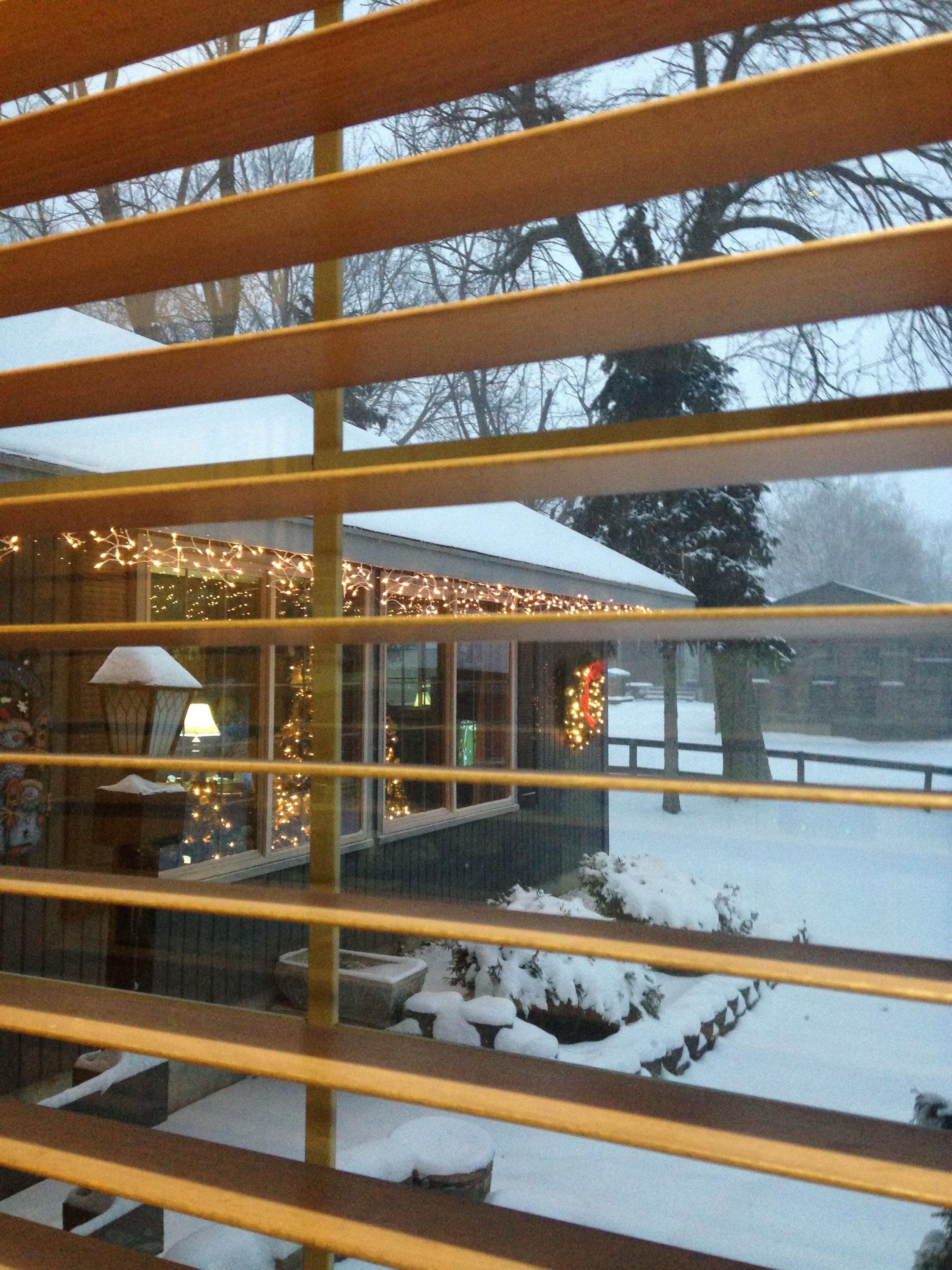 Snow-and-Christmas-Lights.jpg