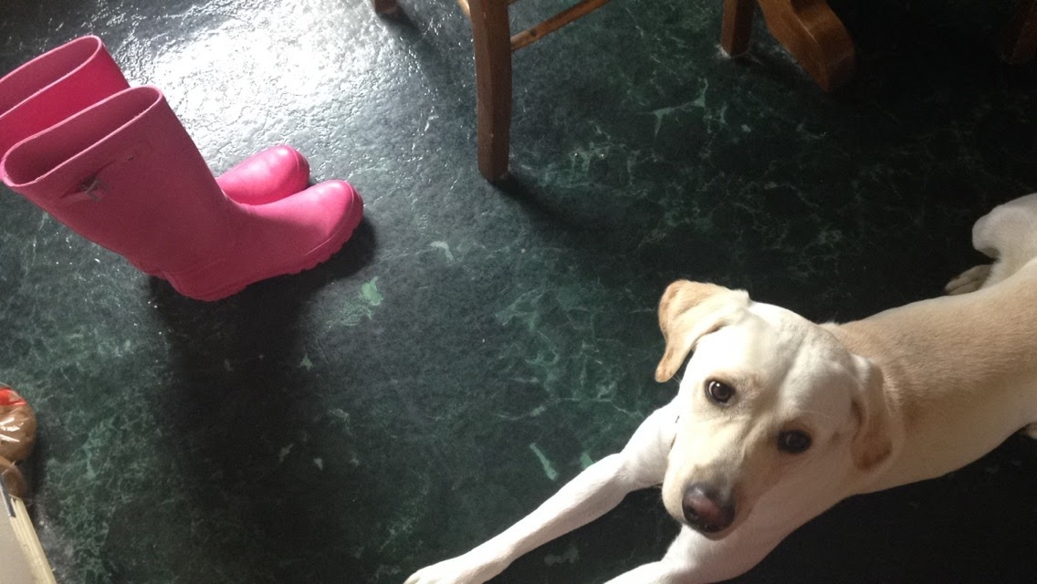 Pink-Rain-Boots-and-Willy.jpg