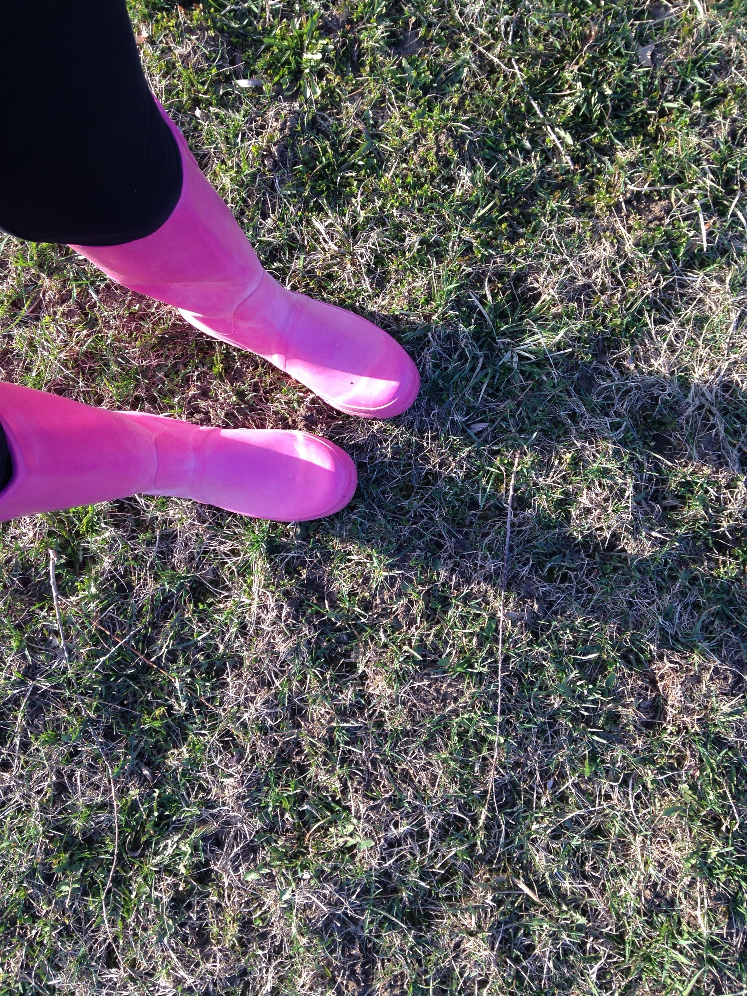 Pink-Rain-Boots.jpg