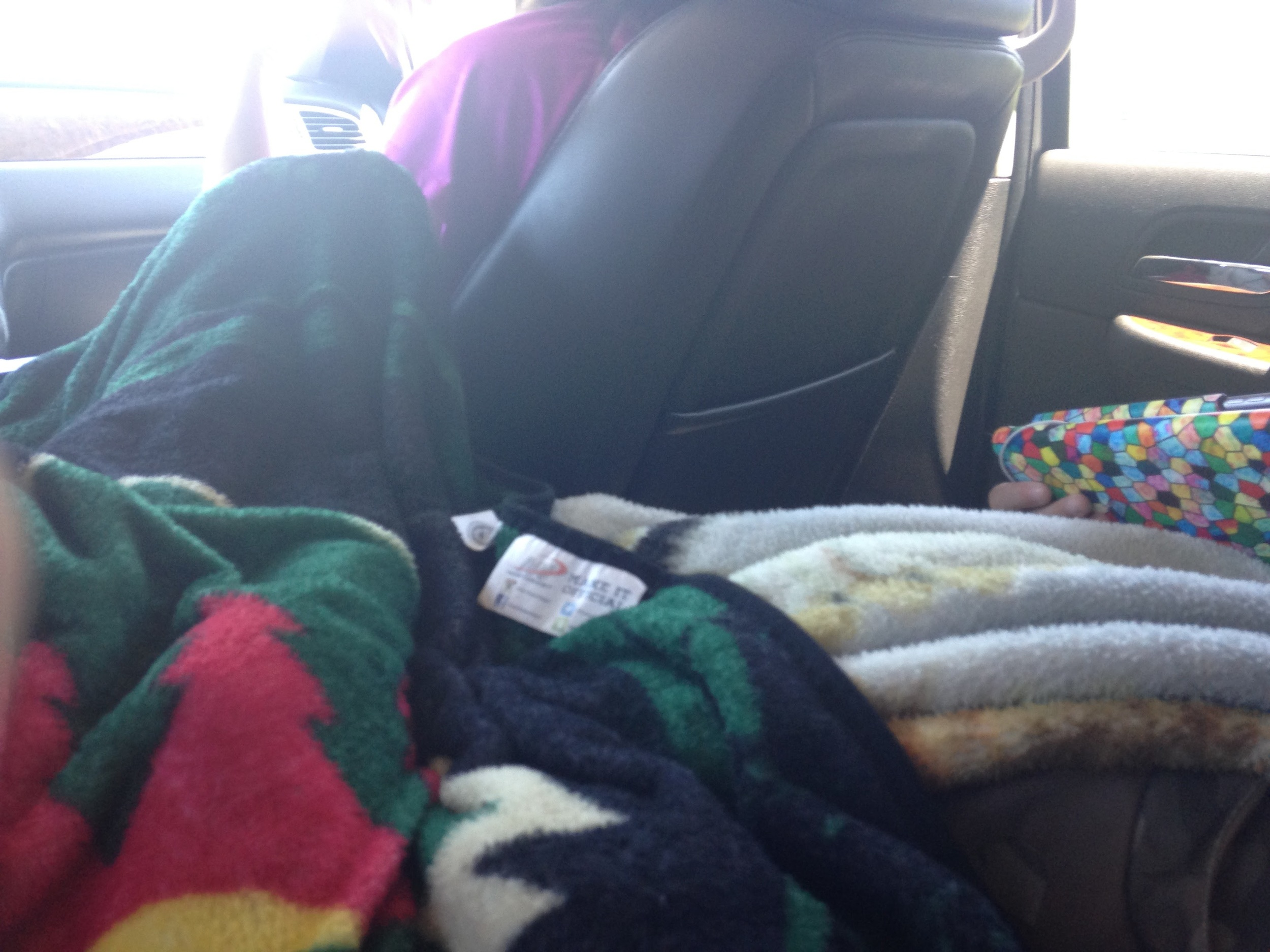 Traveling-in-the-Car.jpg