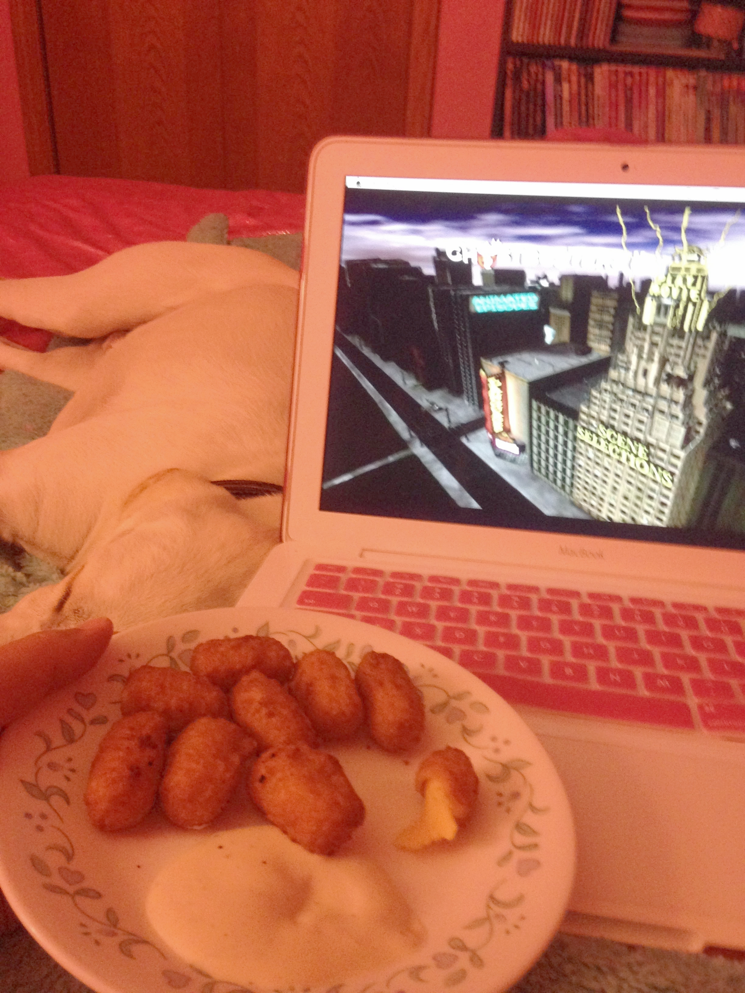 cheeseballs-laptop-movie-dog.jpg