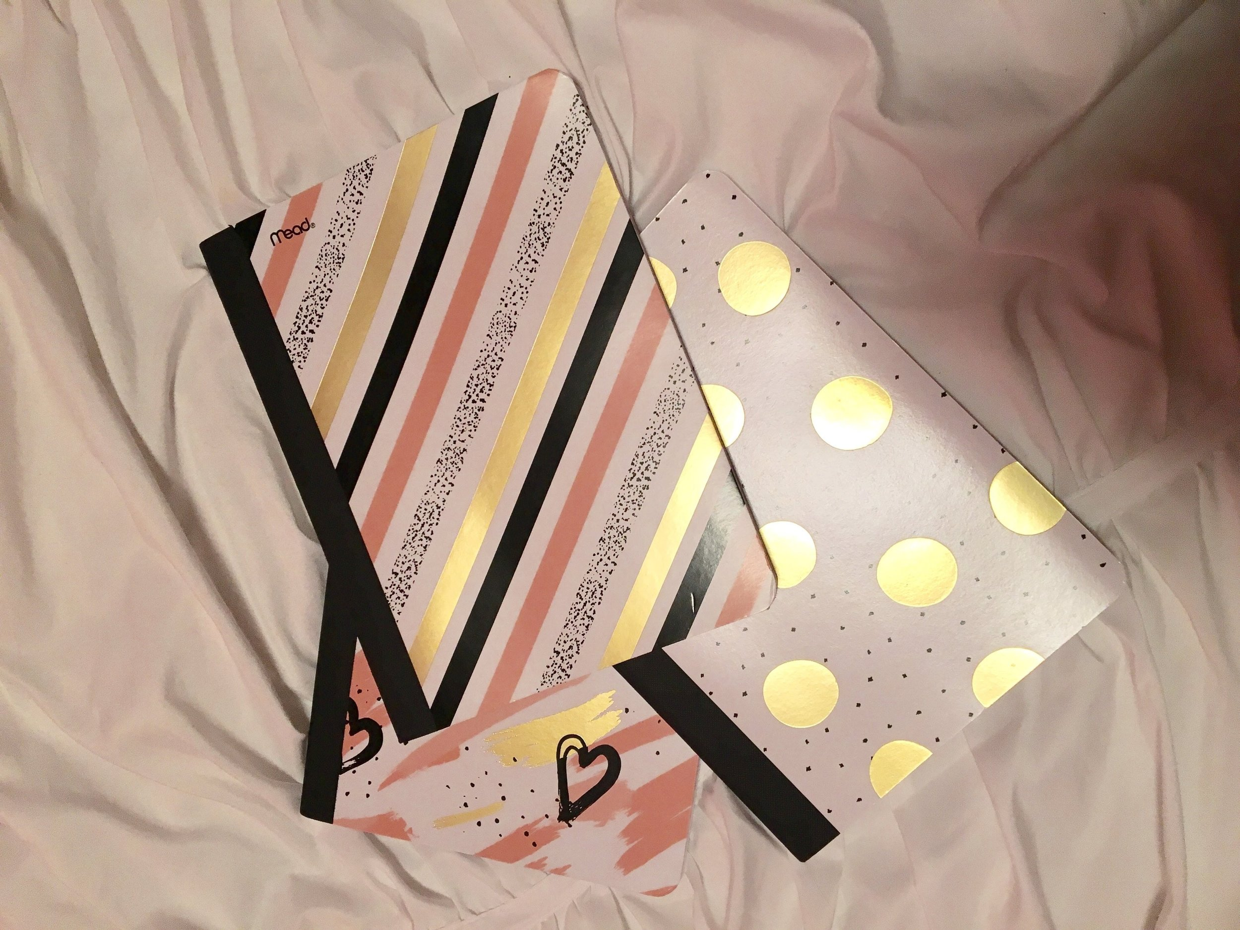 girly-notebooks.jpg