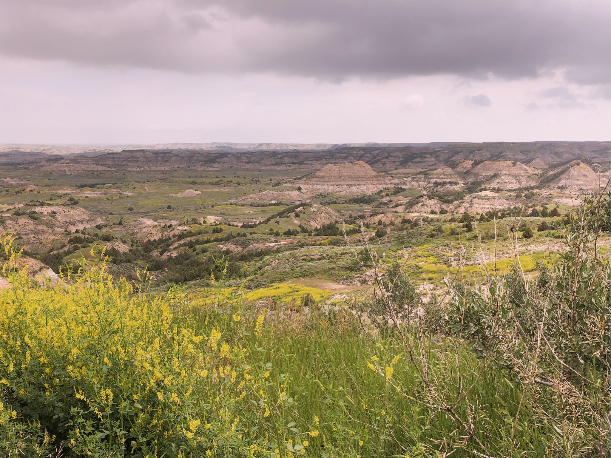 theodore-roosevelt-national-park-view.jpg