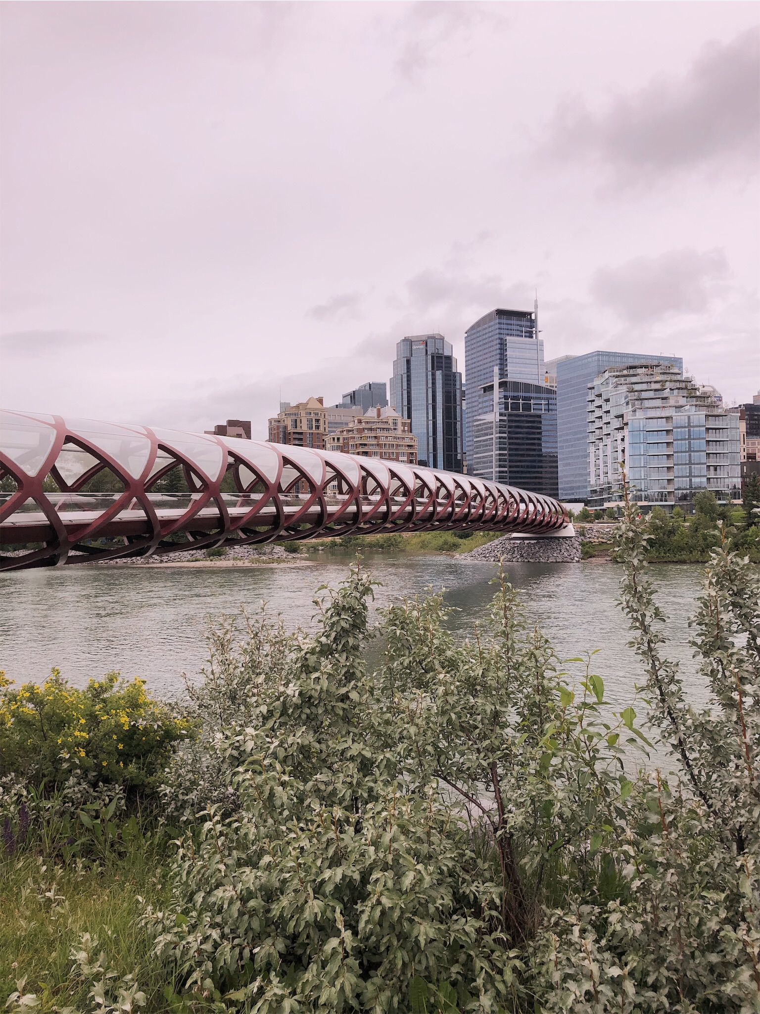 peace-bridge-calgary.jpg