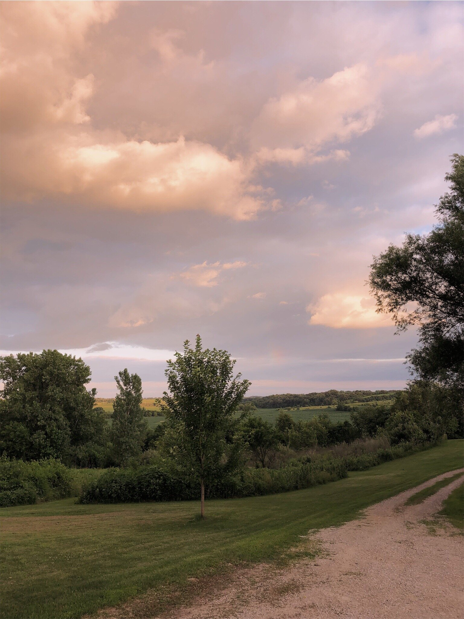 country summer night.jpg