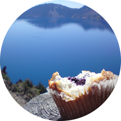 this muffin was delicious