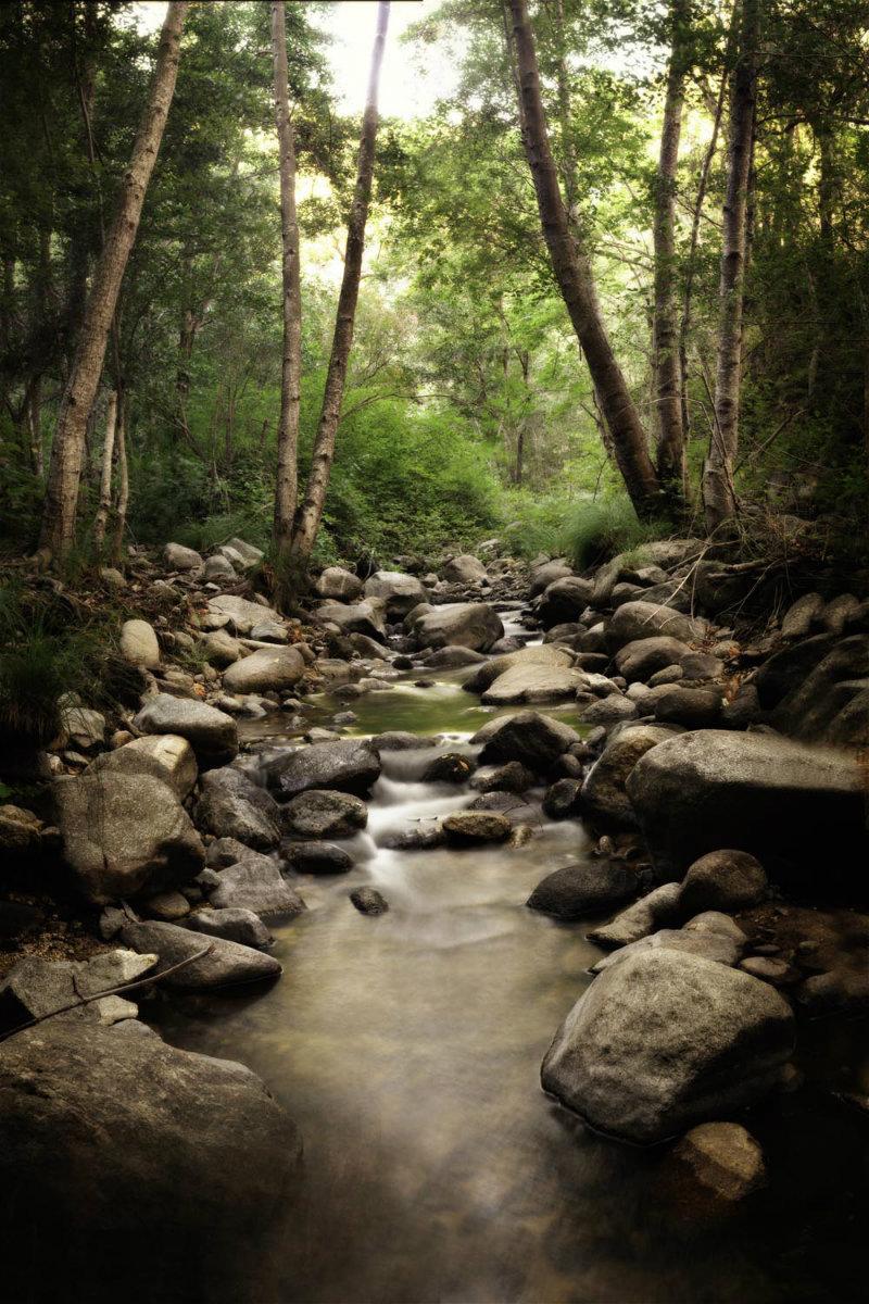 garza_creek_tall.jpg