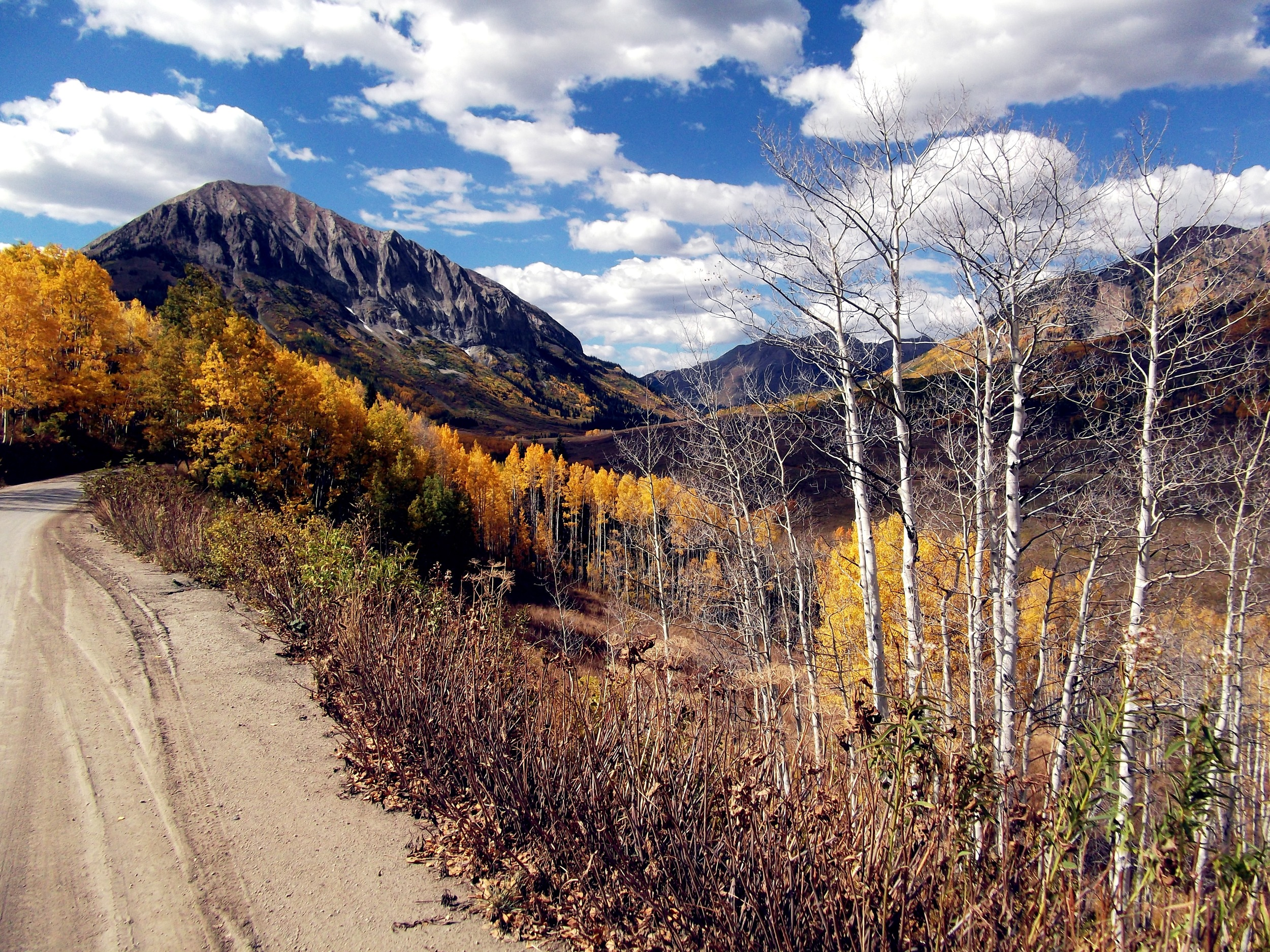 A little slice of beauty en route to the 401 trail in Crested Butte, CO