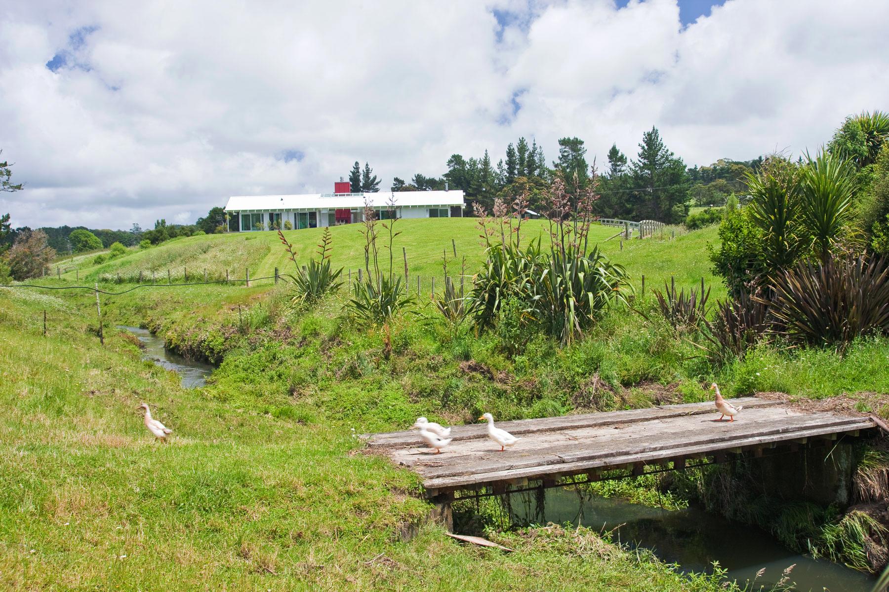 K  Leuschke Kahn Architects_Kumeu house, LKA__CM17547.jpg