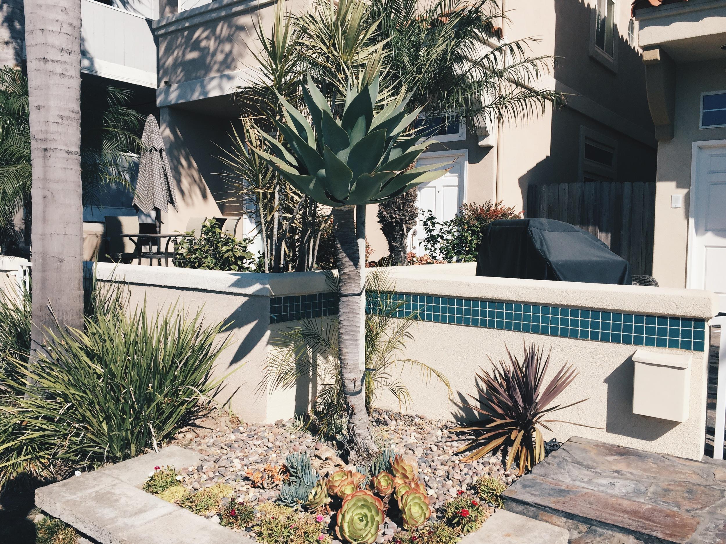 pretty garden -huntington beach, CA