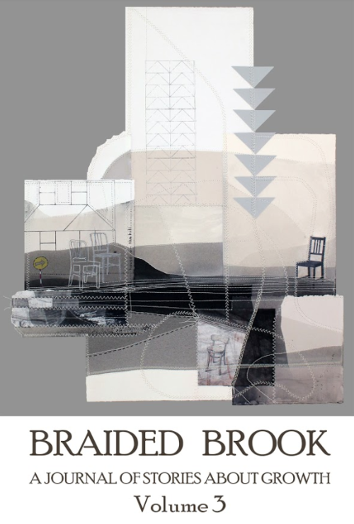 braided_brook_volume_3.png