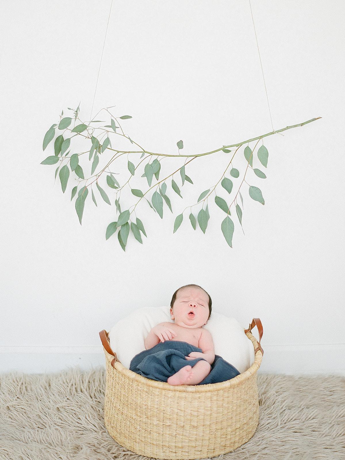 lovely newborn baby boy cute  photo shoot idea