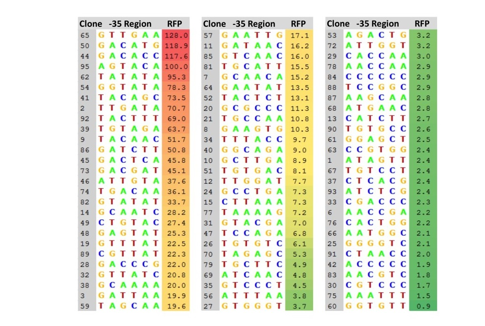 Figure 4. Collection of 81 mutant promoters.  Eighty-one mutant promoter clones were selected from the pClone Red library. For each mutant promoter clone, the sequence of the -35 region is listed, along with its strength, expressed as the ratio of RFP expression compared toPtac.