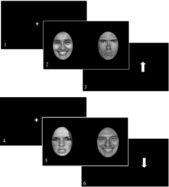 Fig. 1   ABM training and assessment images.  An illustration of the ABM procedures, demonstrating an example of a threat to positive (incongruent) trial sequence (two trials) starting with screen 1 and ending with screen 6.