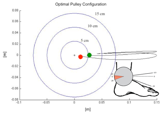 Figure 8: Optimal Pulley Geometry.  This figure shows the optimal pulley geometry as a function of time for the primary actuator of the AAFO.