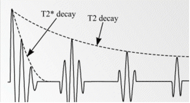 Figure 2.  T2 decay as a function of the envelope of the spin echoes. With each spin echo, the signal decreases in strength. The T2 depends on the signal decrease with each subsequent spin echo while T2* depends on the decay of the signal for each individual spin echo.