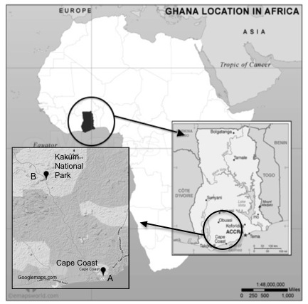 Figure 1. Map of Ghana showing the location of Cape Coast in the Central Region.