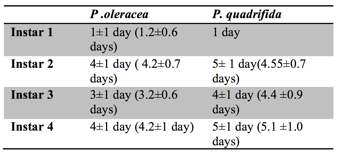 Table 1.  Mean Number of Days of instar stages of Danaid eggfly larvae fed Portulaca oleracea versus Portulaca quadrifida (± s.d.).