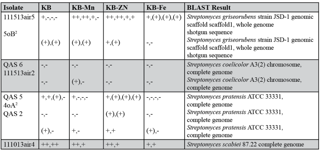 Table 2. Inhibition of S. aureus by 16s rRNA gene identified isolates.  ++ indicates major inhibition, + indicates inhibition, (+) indicates mild inhibition, and – indicates no inhibition.