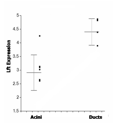 Figure 3. Increased expression of Ro/SSA antigen (Trim 21) in ducts as compared to acini irrespective of disease state. Gene expression is expressed as log2 compared to reference standard. The difference between ducts and acini is significant (p=0.0006).