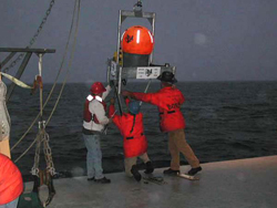 Researchers replace an autonomous hydrophone array after testing.