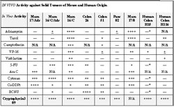 """Table 1. Comparison of cryptophycin effects in various tumors in mice to many of the cancer drugs on the market. N/A means """"not available"""". See Materials and Methods for the conversion of Log Tumor Cell Kill in tumor-bearing mice to ++++, +++, ++, + and , activity ratings. * HCT15 - NCI-SRI data"""