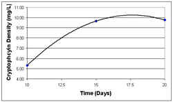 Figure 2. Isolated cryptophycin density of GSV 224. This graph illustrates the amount of cryptophycin that was recovered from GSV 224 using normal phase chromatography during the isolation step of the life cycle experiment.