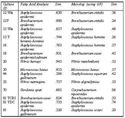 Table 1. Previous identifications of bacterial isolates from shrimp aquaculture. Fatty Acid Analysis refers to a commercial assay of fatty acids present in cell walls. Microlog refers to metabolic fingerprints obtained by substrate-growth analysis. Sim refers to a similarity score reported for the assay.