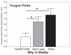 Figure 3: Mean arcsine transformed data of the proportion of subjects who Tongue Flicked in the presence of a human experimenter. All subjects were shelter dogs and were categorized as to the reason they were in the shelter. Dogs were in the shelter as they were collected as strays, for reasons of the owners not wanting the dogs, or for reasons that the owners could not keep the dogs. Four dogs did not fit into these categories and their reasons for being in the shelter were undefined. Those four were dropped from this analysis. Dogs that were surrendered because the owner couldn't keep them Tongue Flicked significantly less than dogs that were collected as strays as well as dogs surrendered because the owners did not want them.