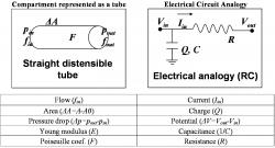 Table 1. Relationships used for the compartmental model and its electric circuit analogy.