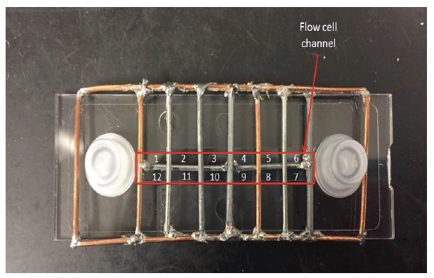 Figure 2. Divsion of flow channel into grid cells.  The flow channel runs through the center of flow cell and is 400μm deep. The metal grid divided the channel area into 12 cells that were approximately 2mm x 7.5mm each. Each cell was assigned a number, as indicated in the figure, which was later used when randomly selecting stacks taken from the sample for an averaged calculation of the crude oil concentration.