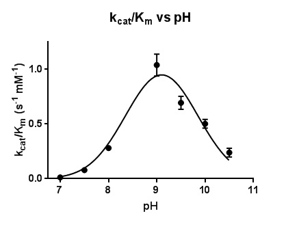 Figure 5. Plot of the catalytic efficiency k_cat/K_m for the reaction of MT_Alr with D-alanine.  The line represents the best fits of the data using nonlinear regression curve fitting.