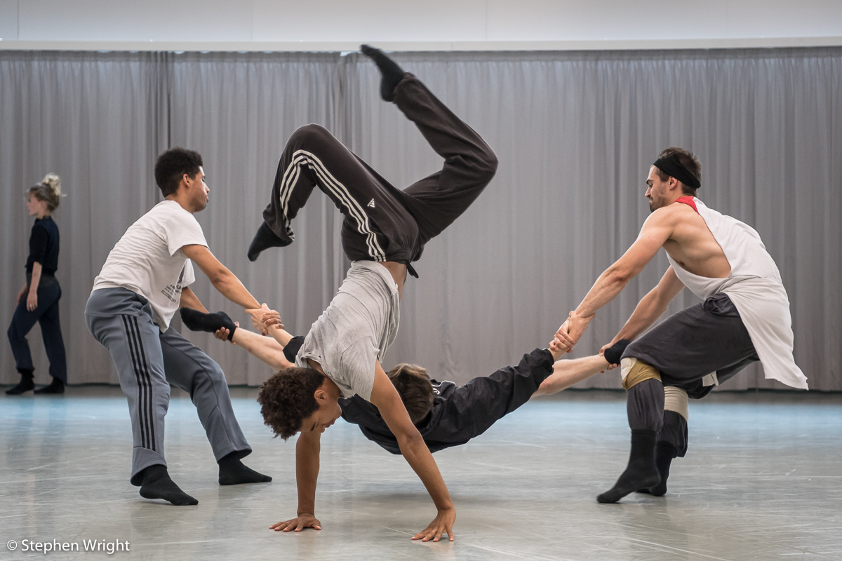 Stephen Quildan, Liam Francis, Joshua Barwick and Adam Park in rehearsal for R ambert 's new work choreographed by  Andonis Foniadakis  .