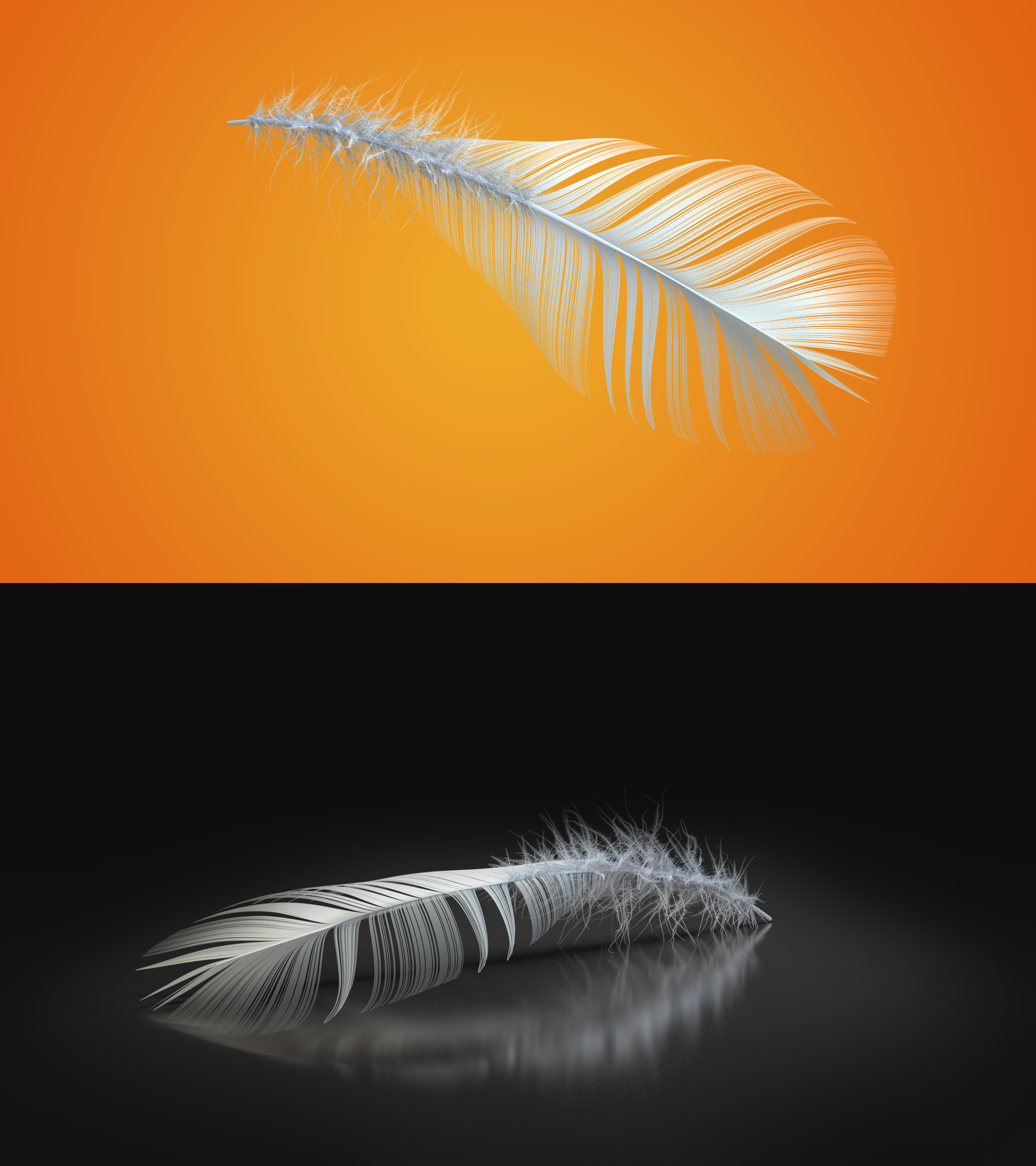Single Feather System