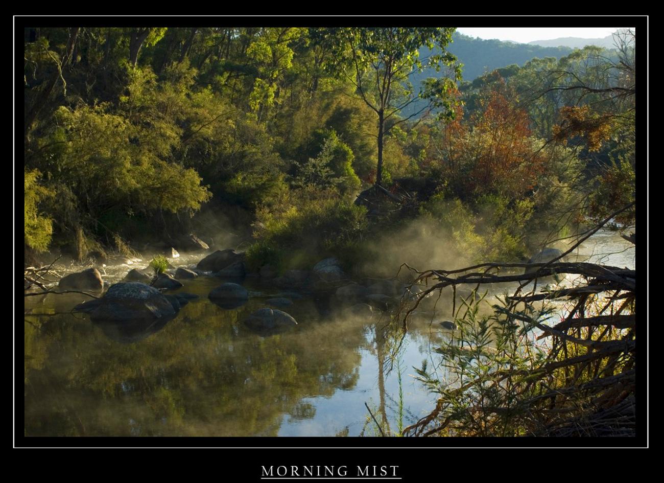 morning mist.1..jpg